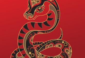 Восточный знак зодиака Змея