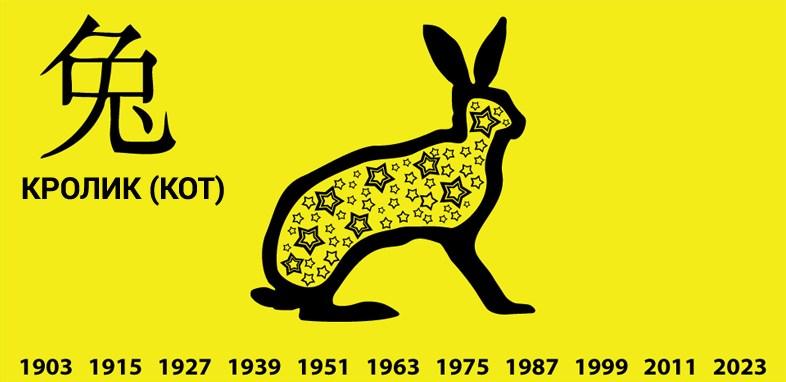 Кролик (Кот)