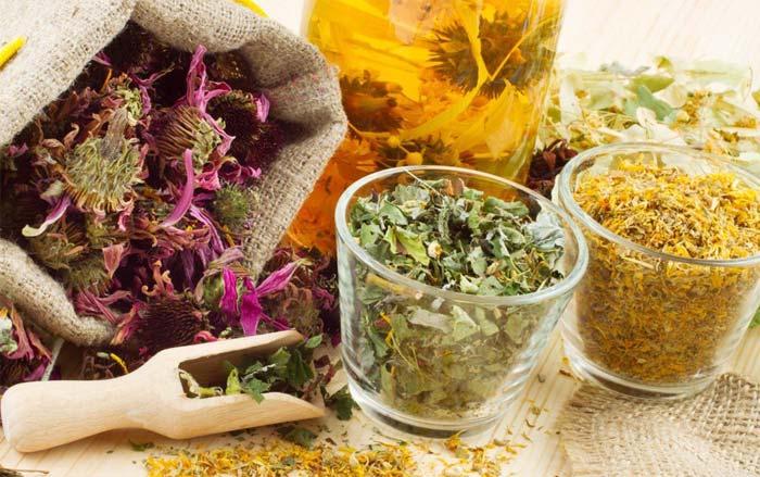 Настой травы как делать лекарственный