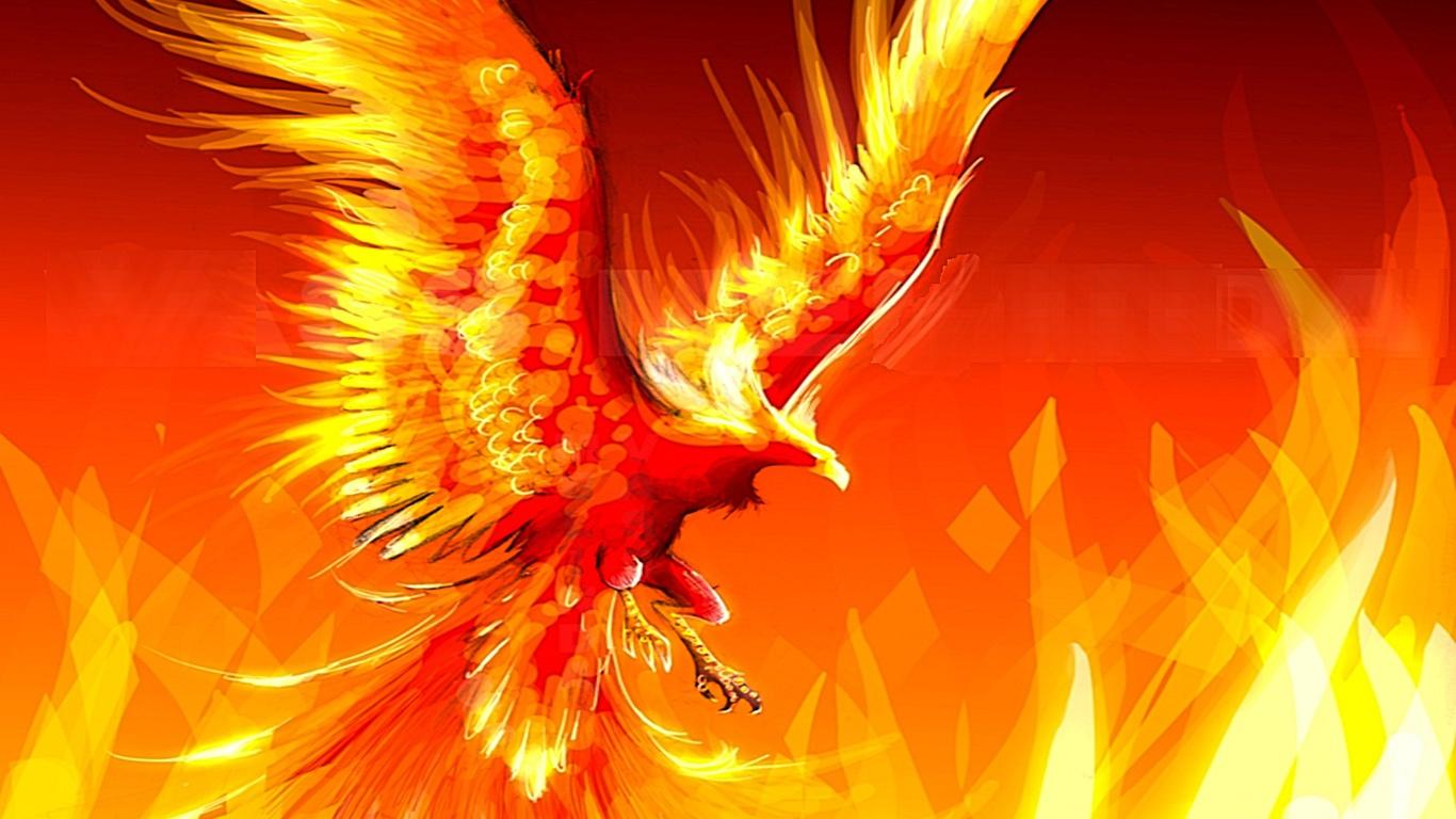 Огонь Инь