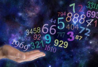нумерология в бизнесе