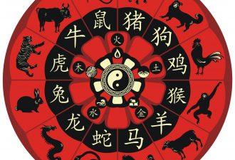 Восточный гороскоп на месяц февраль