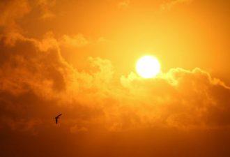 Солнце во сне