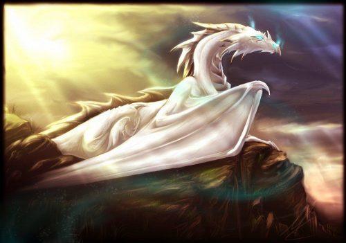 Белый дракон и Хризантема