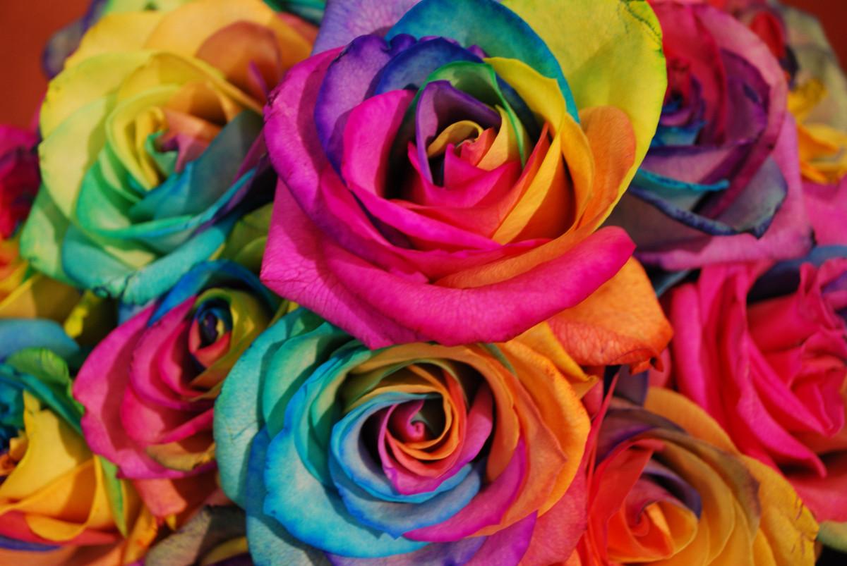Цвет и характер человека